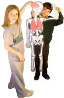 El hombre esqueleto, detalle