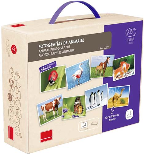 Fotografías Animales detalle de la caja