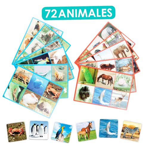 Loto + Palabras: Animales