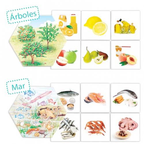 ¿De dónde vienen los alimentos? detalle 3