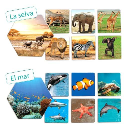 ¿Dónde viven los animales? detalle 3