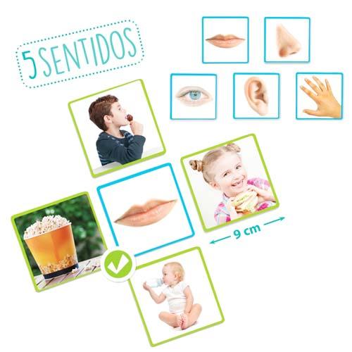 Los cinco sentidos detalle 2