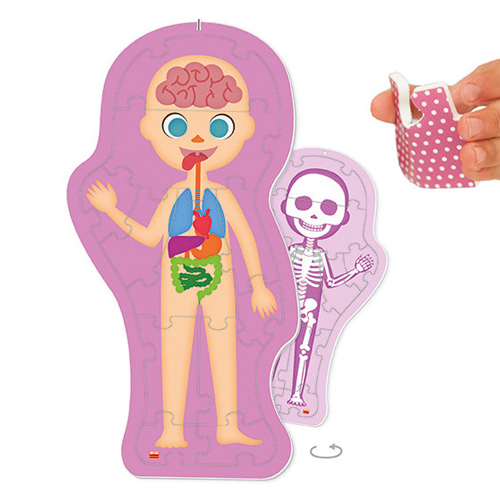 ¿Cómo soy? El cuerpo humano detalle 2
