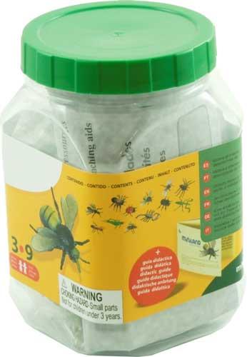 Insectos 12 ud. detalle de la caja