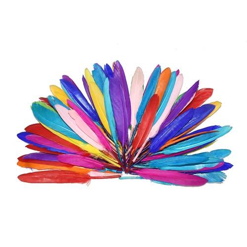 Plumas Colores surtidos 500 ud detalle 1