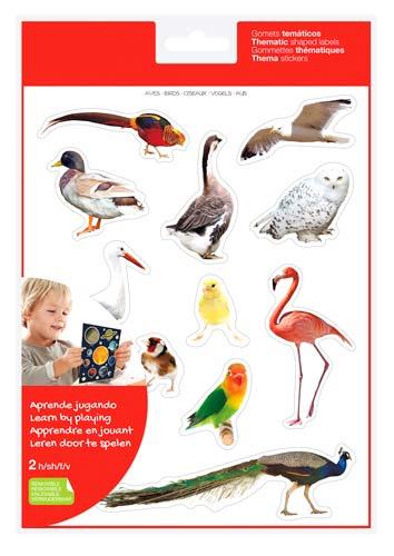 Gomets realistas aves 2 hojas