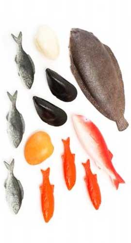 Comiditas Pescados y mariscos