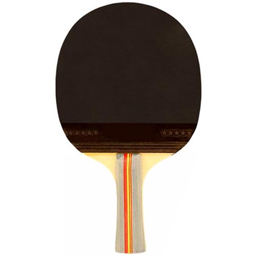Pala ping-pong 5 lámina 4 estrellas P500