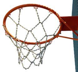 Red basket antivadálica (2 ud.)