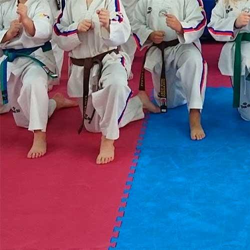 Suelo artes marciales 2,6 cm de grosor detalle 5