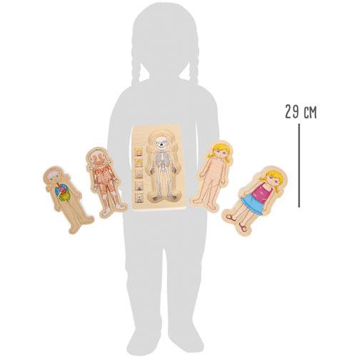 Anatomía puzzles por capas Niña 28 piezas detalle 2