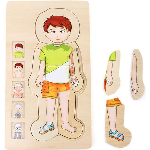 Anatomía puzzles por capas Niño 28 piezas detalle 2